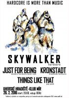 HARDCORE IS MORE THAN MUSIC: Skywalker / Just For Being / Kronstadt / Things Like That